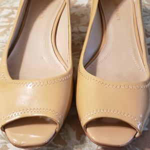 Ellen Tracy shoes called  abby
